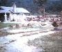 1969 Flood A19